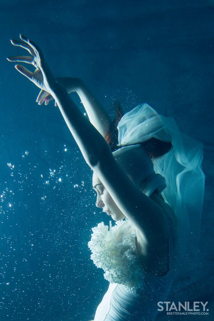 Underwater Photographer Los Angeles New Zealand - Brett Stanley (6)