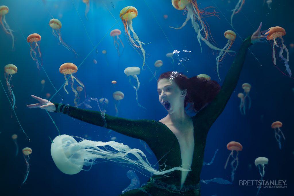 Jellyfish Soup Ocean Conservation Project - Christine Ren Films